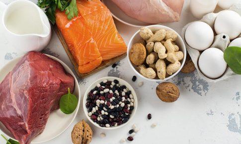 Protein: The Basics